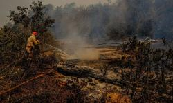 Militares auxiliam no combate aos incêndios em MT e MS