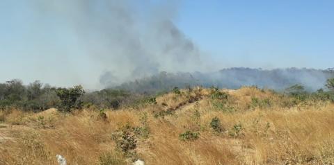 As queimadas vêm aumentando muito em Morrinhos Goiás.