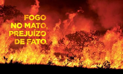Conheça os males que as queimadas provocam para o Mundo e para sua Saúde.