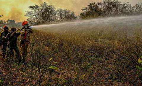 Salles inspeciona áreas em Mato Grosso atingidas pelo fogo
