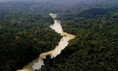 Salles e Araújo discutem meio ambiente com representante dos EUA