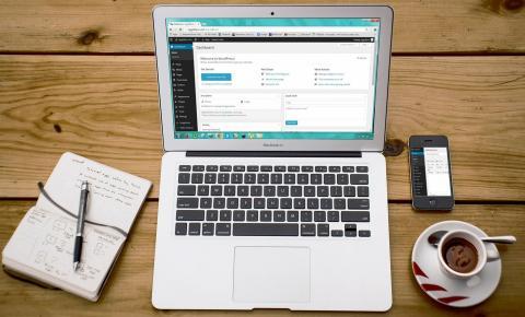 Como desenvolver sites WordPress de maneira profissional?
